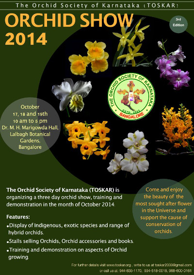 orchid_show_2014